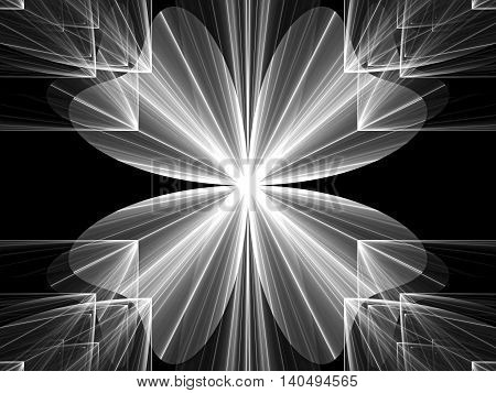 Abstract Four-petal Flower Digitally Generated Image