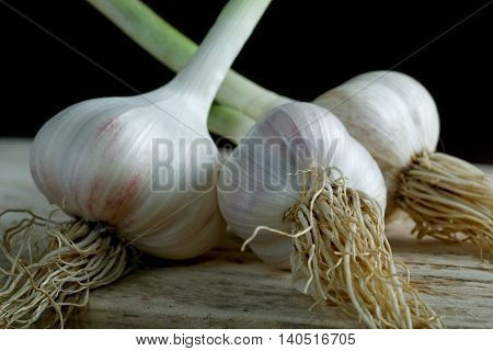 Head Of Garlic On The Table Rustic