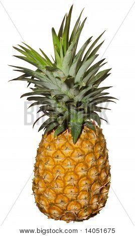 Pineapple Over White