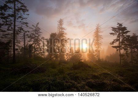 Sunset in forest on ridge of mountains Slovenské Rudohorie Inner Western Carpathians Slovakia.