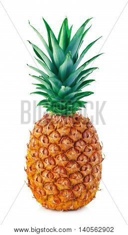 Ripe Pineapple Close-up Isolated On A White Background.