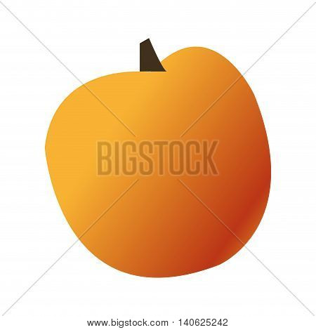 simple design whole orange icon vector illustration
