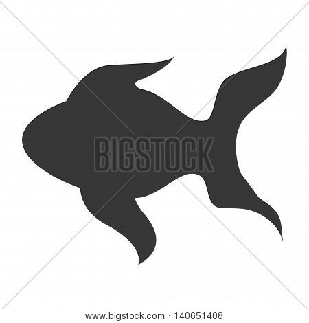 flat design single goldfish icon vector illustration