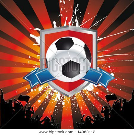 football sign - soccer ball on the shield
