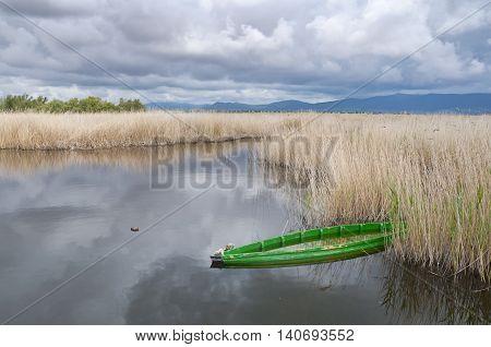 Tablas de Daimiel National Park, Spain. It is a nature reserve in south-central Spain.