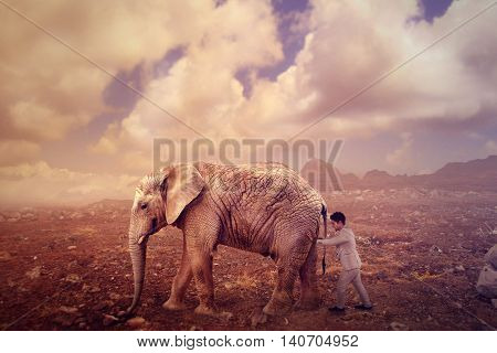 businessman pushing an elephant in a desert landscape