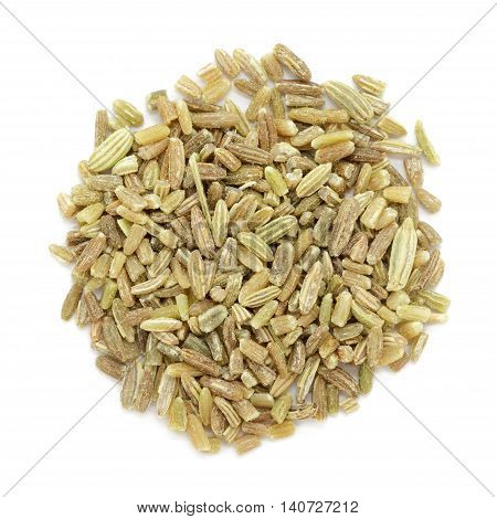 Organic fennel (Foeniculum vulgare) in big cut size. Isolated on white background. Macro close up. Top view.