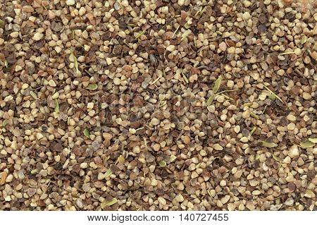 Organic Black pepper (Piper nigrum) peppercorns in big cut size. Macro close up background texture. Top view.