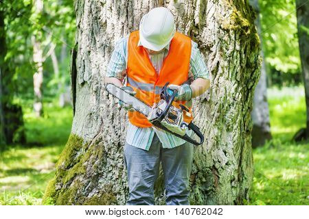Lumberjack checking chainsaw near tree in summer day