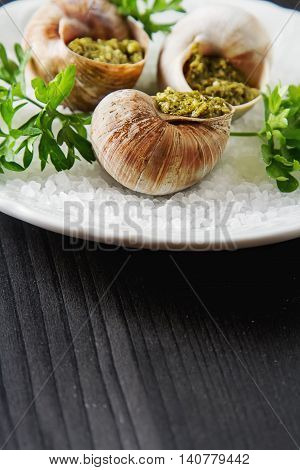 Large Escargots De Bourgogne - Snails Baked  Garlic Butter, With