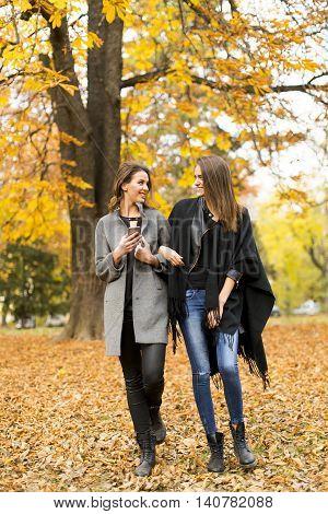 Young Women In The Autumn Park