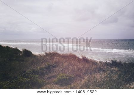 Beach and Sand Dune.Beach and sand dune covered with Marram Grass, Germany, Sylt, List. Juli 2016