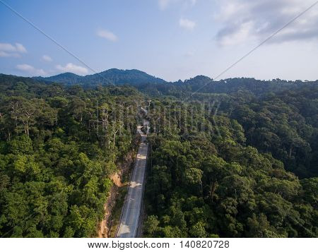Aerial jungle way view of Koh Phangan, Thailand