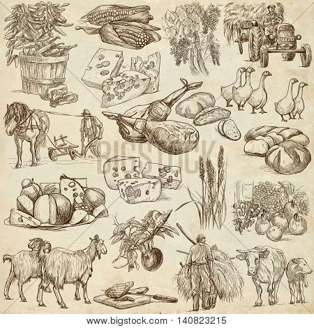 Agriculture.Farming.Life of farmer.Agricultural set.Collection of hand drawing illustrations.Pack of full sized hand drawn illustrations.Set of freehand sketches.Line art technique.Drawing on paper.