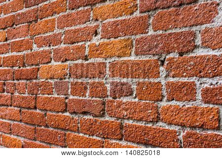 Red bricks in wall angled away from the viewer.