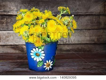 blue bucket dandelions on a wooden background