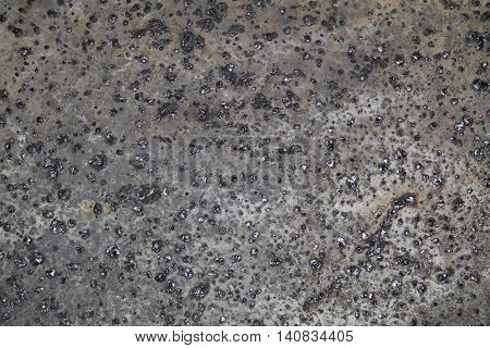 weathered concrete with pebbles grunge grim texture