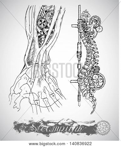 Human anatomy hand and backbone with vintage mechanism in steam punk style. Arm bones and retro machines. Hand drawn illustration, sketch tattoo, old black and white science set  with lettering