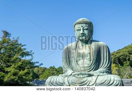 The Great Buddha (Daibutsu) of Kotokuin Temple in Kamakura Japan.