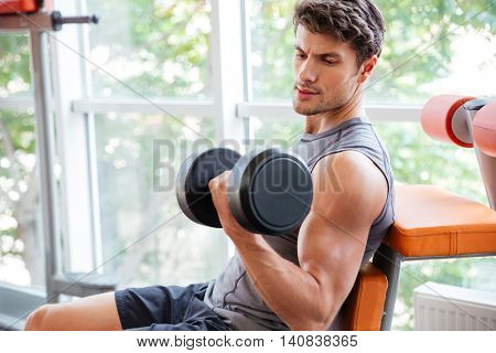 Concentrated young sportsman doing exercises for biceps using dumbbells in gym