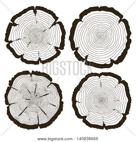 Vector tree rings and saw cut trunk set. Wood trunk concentric and linear monochrome cut trunk illustration