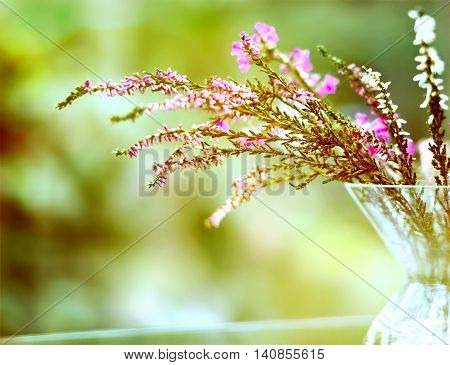 Pink heather plant in a vase on a glass table.