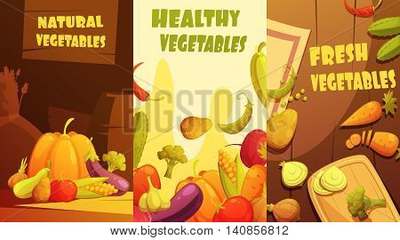 Fresh healthy organic farmers market vegetables vertical banners composition poster retro cartoon style isolated vector illustration