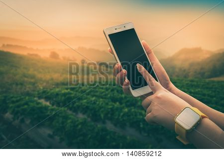 Young woman wearing yellow watch touching on smartphone screen with blurry outdoor nature background in morning time with vintage filter effect