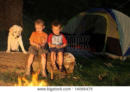 Boys and dog roasting marshmallows at campfire