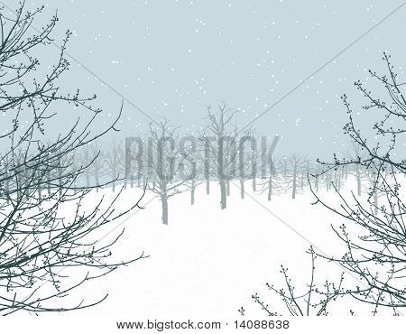 winter scene illustration