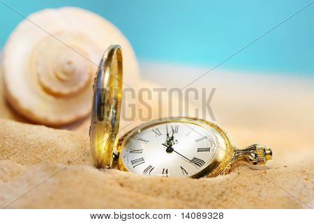 Watch lost in the sand with seashell behind