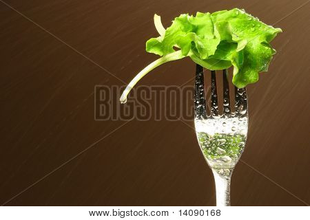 Leaf of lettuce on a fork with water spray in background