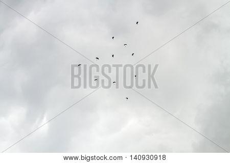 Many Parachutists Descends Cloudy Sky