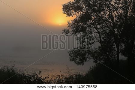 Beautiful early summertime landscape with sunset over the river