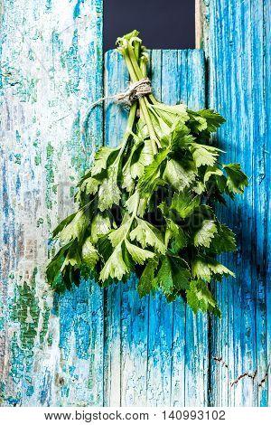Green Herb Bunch