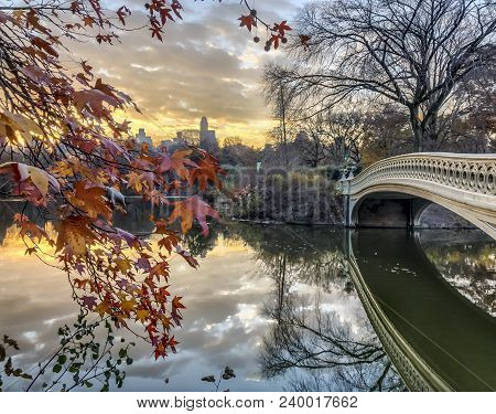 Central Park, New York City  In Autumn With Fall Foliage, Bow Bridge