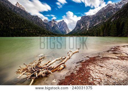 detail of dobbiaco lake in italian alps