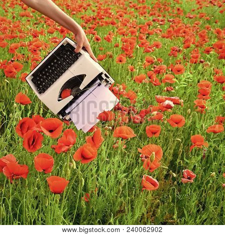 Journalism And Writing, Summer. Opium Poppy, Agile Business, Ecology. Vintage Typewriter In Hand, Ed