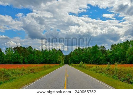 A Landscape View Down The Center Of A Striped Country Road With Trees And Dramatic Cloud Formation.