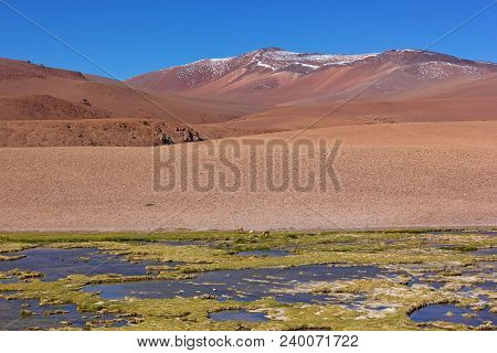 Picturesque Landscape With Grassland On Foreground And Mountains Range On The Horizon. Majestic Land