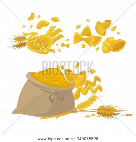 Pasta And Wheat Or Cereal Flour Icons. Vector Design Of Spaghetti, Durum Fettuccine And Farfalle Wit
