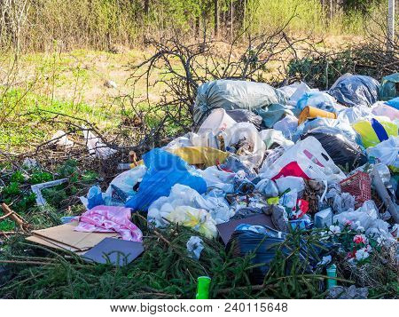 Large Garbage Dump In The Forest, Environmental Pollution By Waste