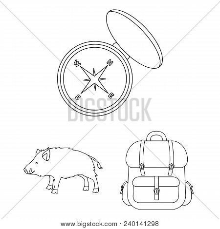 Hunting And Trophy Outline Icons In Set Collection For Design. Hunting And Equipment Vector Symbol S