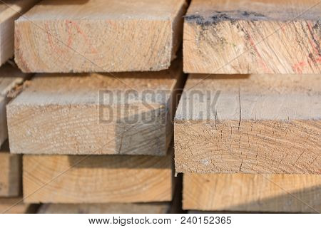 Texture Of The Board From The Butt. The End Of The Tree. Many Boards.