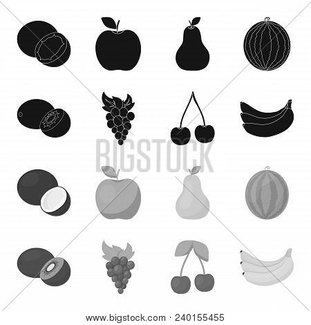 Kiwi, Grapes, Cherry, Banana.fruits Set Collection Icons In Black, Monochrome Style Vector Symbol St