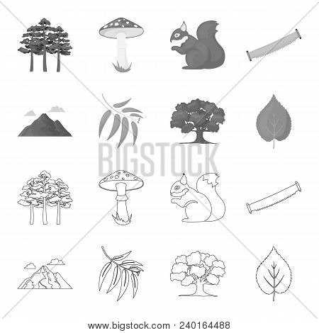 Mountain, Cloud, Tree, Branch, Leaf.forest Set Collection Icons In Outline, Monochrome Style Vector