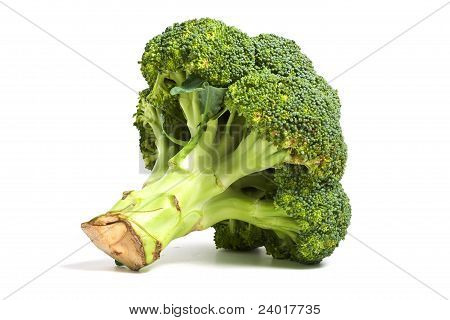 Single Broccoli Cabbage