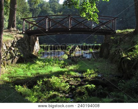 Wooden Bridge In Japanese Style, Forest Still Life , Trees In Bright Afternoon Sunshine