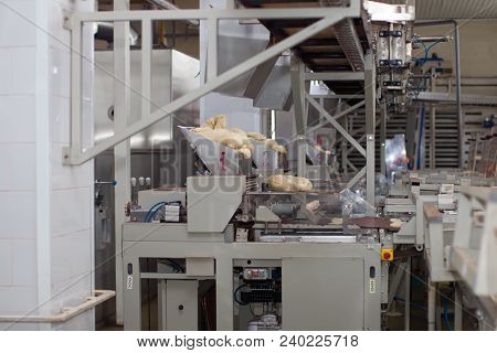 Industrial Line For The Production Of Culinary Products From Yeast Dough. Bread Factory