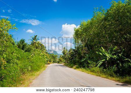 Local Road In Krabi Thailand